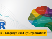How Is R Language Used By Organizations
