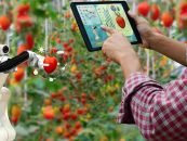 Robotic Agriculture Will Provide Sustainable Assistance to Farmers in Feeding the Mouths