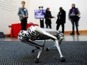 Ethics in Robotics: Will Robots Run in Line with Human Values?