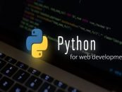 Top 5 Python Web Development Frameworks for 2020