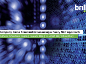 Company Name Standardization using a Fuzzy NLP Approach