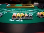 How Professional Gamblers Rely on Data to Make Decisions
