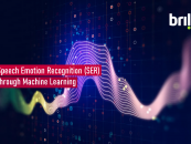 Speech Emotion Recognition (SER) through Machine Learning