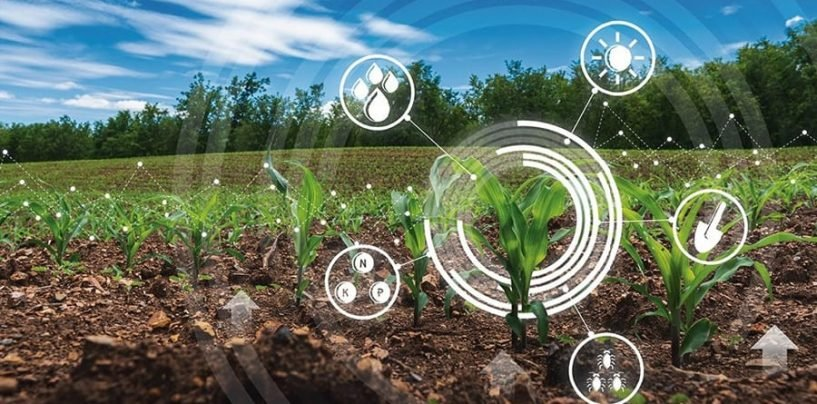 Fostering Agriculture by Leveraging Artificial Intelligence in Genomics
