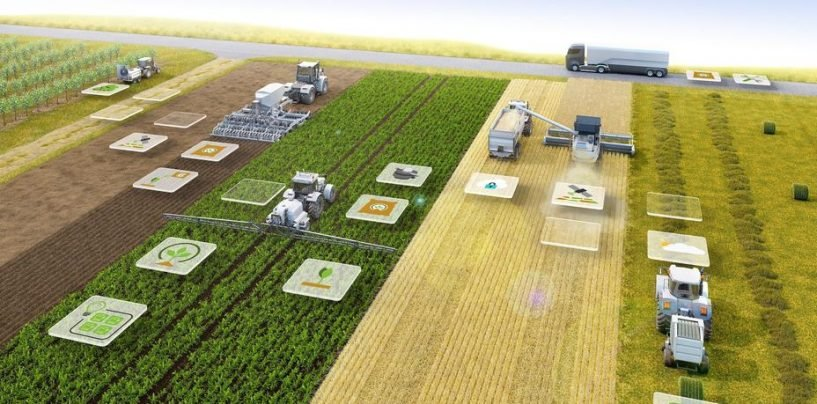 Farm Liberalisation Brings Prosperity to the Food Supply Chain