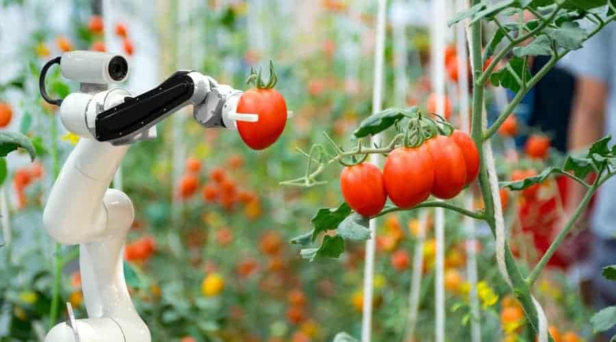 Role of AI in the Field of Precision Agriculture and its Uses