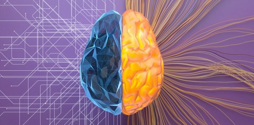 Combining Machine Learning with Human Intelligence to ensure Security