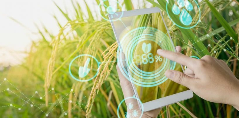Smart Farming Supply Chains could Minimise Food Wastage