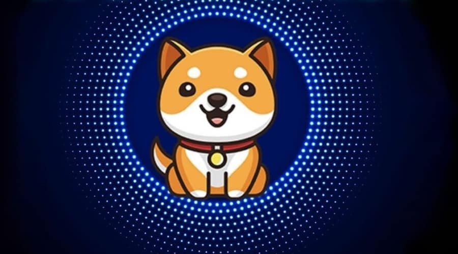 Baby Doge Cryptocurrency